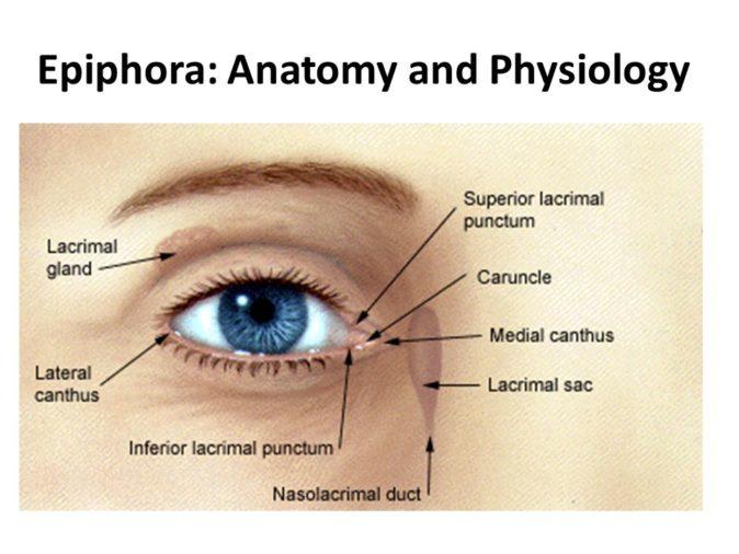 epiphora tanısı
